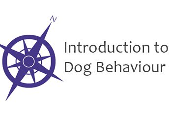 Introduction to Dog Behaviour